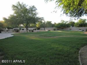 Huge backyard w/ grassy play area