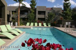 1295 N ASH Street, 323, Gilbert, AZ 85233