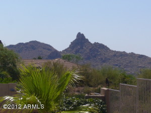 11542 E CHRISTMAS CHOLLA Drive, Scottsdale, AZ 85255