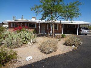 Beautiful natural desert yard!