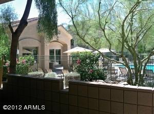 29606 N TATUM Boulevard, 181, Cave Creek, AZ 85331