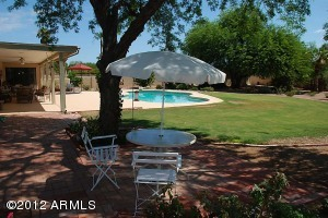 LARGE SHADY TREES, EMERALD GREEN LAWNS AND BIG DIVING/LAP POOL OFF COVERED PATIO.