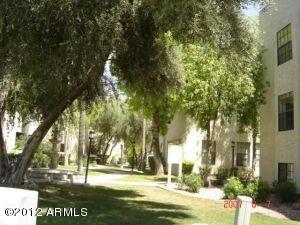 8020 E THOMAS Road, 213, Scottsdale, AZ 85251