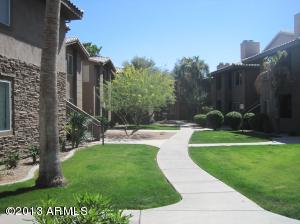 7009 E Acoma Drive, 1165, Scottsdale, AZ 85254