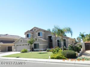 1446 S Cholla Street, Gilbert, AZ 85233