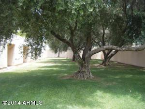 930 S Dobson Road, 74, Mesa, AZ 85202