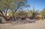 25150 N WINDY WALK Drive, 56, Scottsdale, AZ 85255