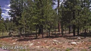 5176 Taos Circle Lot 150, Happy Jack, AZ 86024