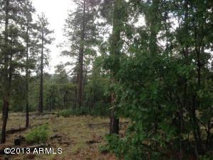 1575 Pine Meadow Drive, 37, Williams, AZ 86046