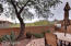 25555 N Windy Walk Drive, 78, Scottsdale, AZ 85255