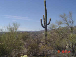 33080 S MATALA Way Lot 1, Black Canyon City, AZ 85324