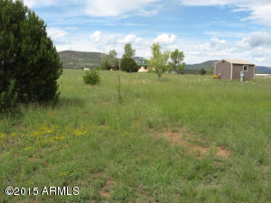 281 S Rolling Hills Road, x, Young, AZ 85554