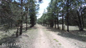 394 Forest Service 63 Road, 1, Young, AZ 85554