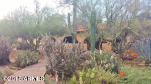4929 E Rancho Tierra Drive, Cave Creek, AZ 85331