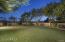 Grass Backyard