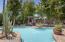 Pool & Private Backyard