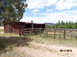 46006 N N. Highway 288, B-3A, Young, AZ 85554