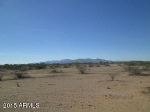 Interior of 3.16 acre lot. Desert vegetation and mostly flat terrain.