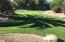 Grass in backyard