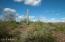 41000 N Honda Bow and Litchfield Road, Peoria, AZ 85382