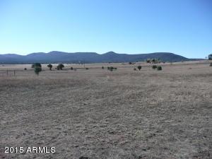 480 W Baker Ranch Road, 0, Young, AZ 85554