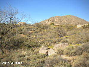 42360 N DEER TRAIL Road, 156, Cave Creek, AZ 85331
