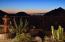 24610 N 119TH Place, Scottsdale, AZ 85255