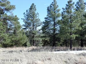 Lot 14 Red Cabin Ranch Estates Lot 14, Vernon, AZ 85940