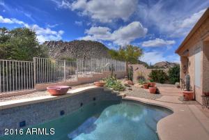 11499 E Christmas Cholla Drive, Scottsdale, AZ 85255