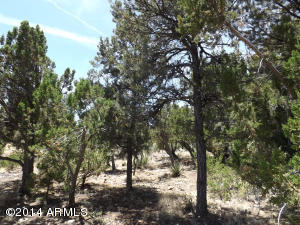 3472 CAREFREE Road Lot 131, Heber, AZ 85928