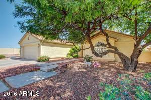11135 E WATFORD Court, Sun Lakes, AZ 85248