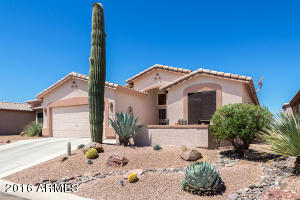 Front patio, majestic Saguaro, pro landscaping, knee wall on front patio
