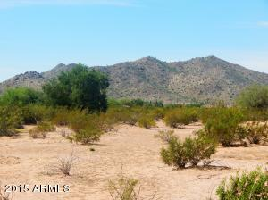 11709 N SILVER DOG Way, Maricopa, AZ 85139