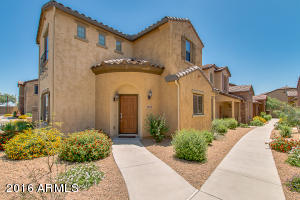 3975 E CAT BALUE Drive, Phoenix, AZ 85050