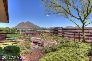 Views of Camelback Mountain!