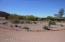 Desert landscaping in center of circular drive
