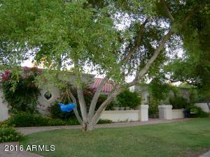11001 N 50TH Street, Scottsdale, AZ 85254