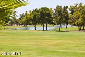 9901 E CEDAR WAXWING Drive, Sun Lakes, AZ 85248