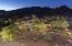 3414 E MARLETTE Avenue, Paradise Valley, AZ 85253