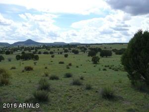 380 E Mail Trail Road, C, Young, AZ 85554