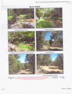 823 W Elk song Trail, 23E, Young, AZ 85554