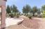18102 N PETRIFIED FOREST Drive, Surprise, AZ 85374