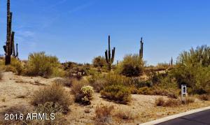 29503 N 111TH Way, 19, Scottsdale, AZ 85262