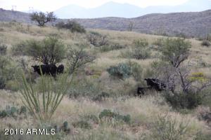 00 E Miller Ranch Road Lot 0, Vail, AZ 85641