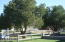 Mature Tree's and fenced yard! Great for so many things!