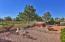 14205 W POWDERHORN Drive, Surprise, AZ 85374