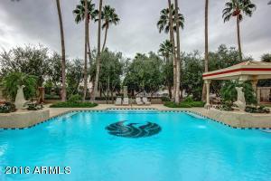 4826 N 65TH Street, Scottsdale, AZ 85251