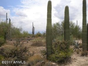 6102 E Mesquite Road, 28, Cave Creek, AZ 85331