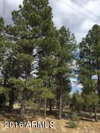 6473 Mogollon Trail Lot 39, Happy Jack, AZ 86024