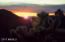 Arizona Sunsets Are Like No Others